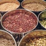 Ernährung im Ayurveda + Ayurveda-Ernährungstipp: Zur Darmgesundheit