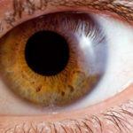 Augenerkrankungen - naturheilkundlich behandeln